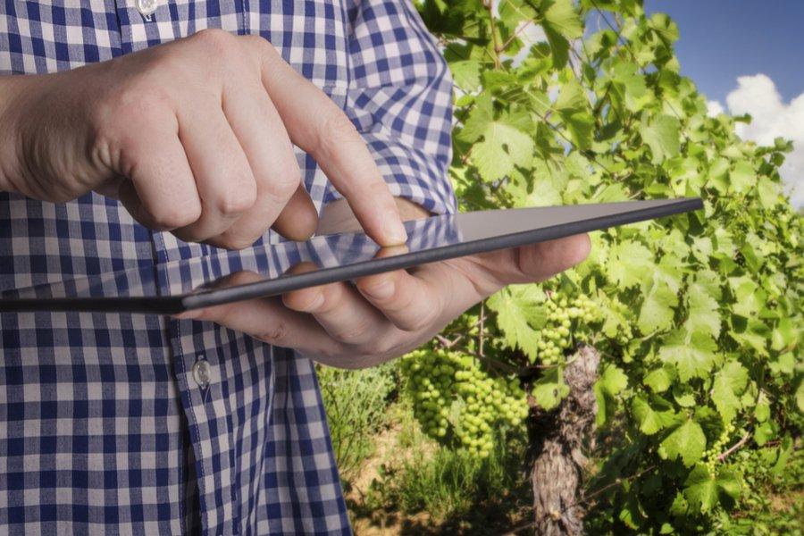 Registro telematico vini